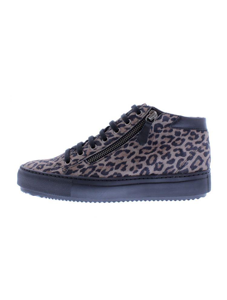 Verhustshop.com 8417-65-36_2659 Tara sneaker bruin